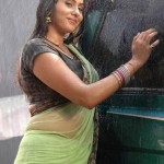 Namitha-hot-wet-saree