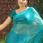 Navneet-hot-wet-saree-navel