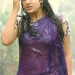 Nayanthara-hot-wet-saree