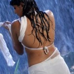 Priyamani-hot-wet-saree