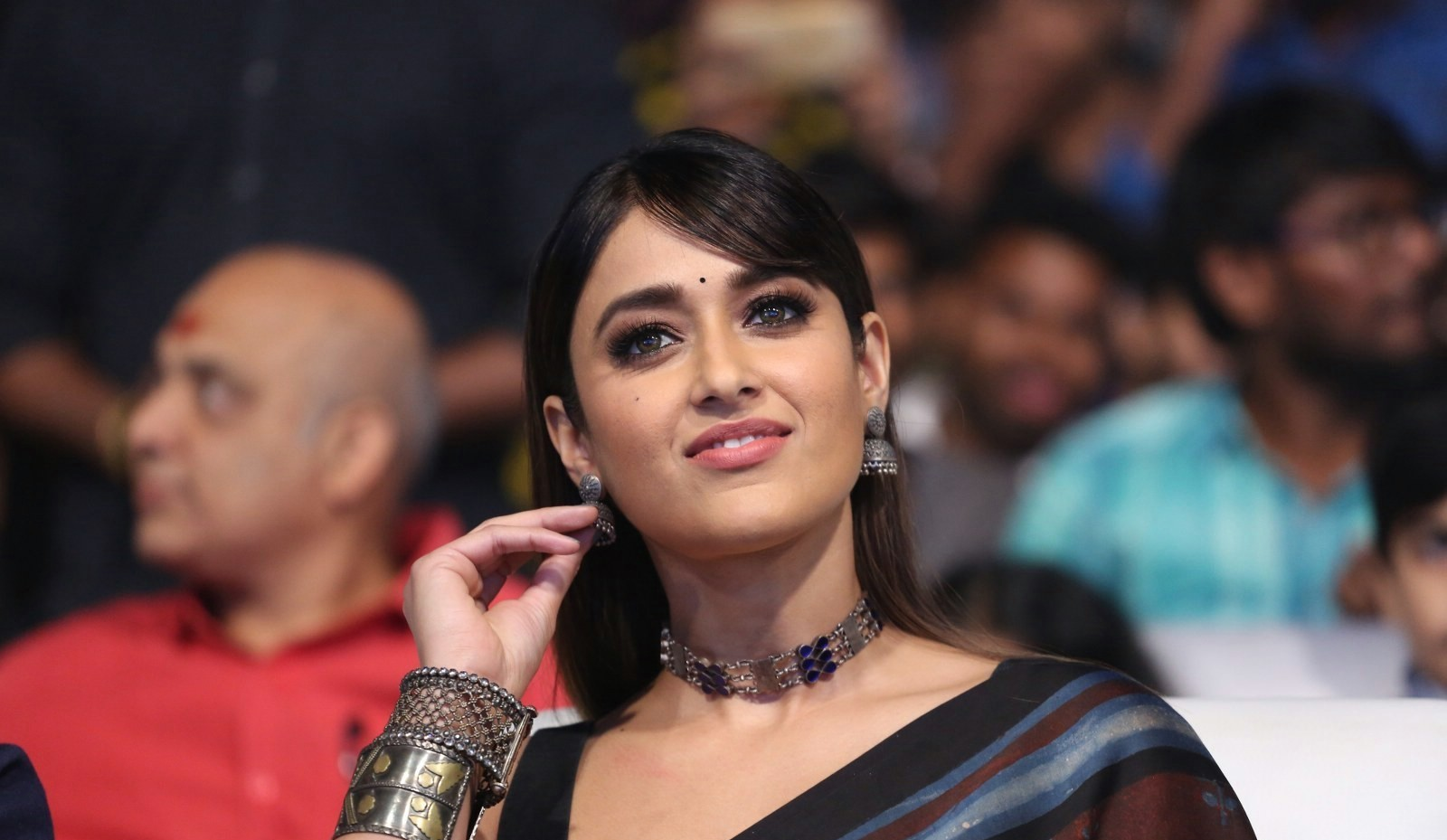 actress-ileana-brown-saree-photos-hd-1